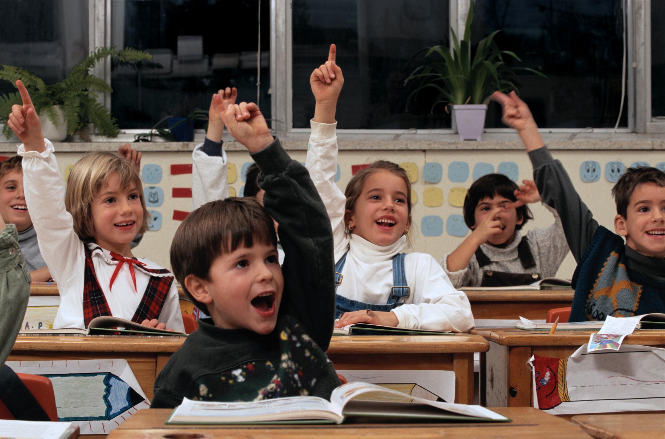 Прикольная картинка с классом, тюльпанами квиллинг картинки